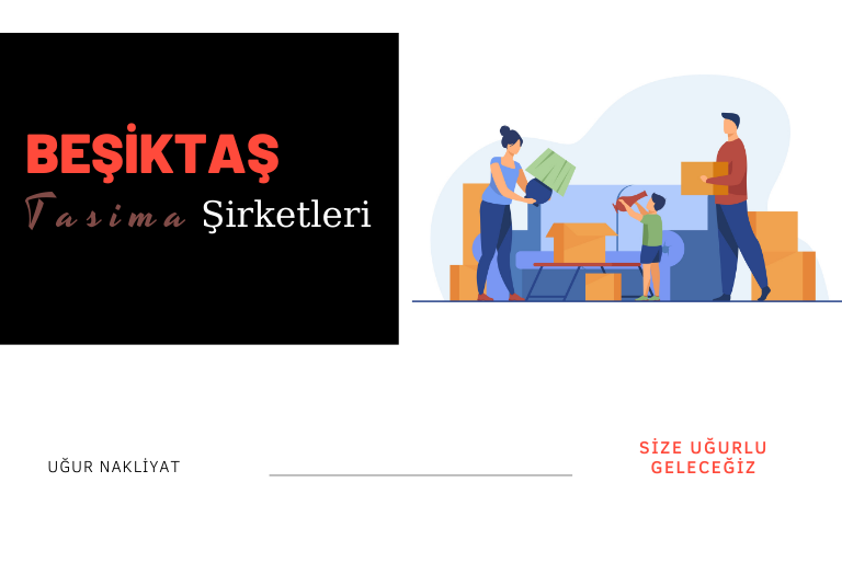 Beşiktaş taşıma şirketleri