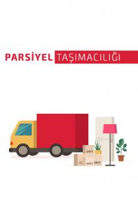 parsiyel taşıma